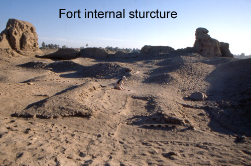 fort 11
